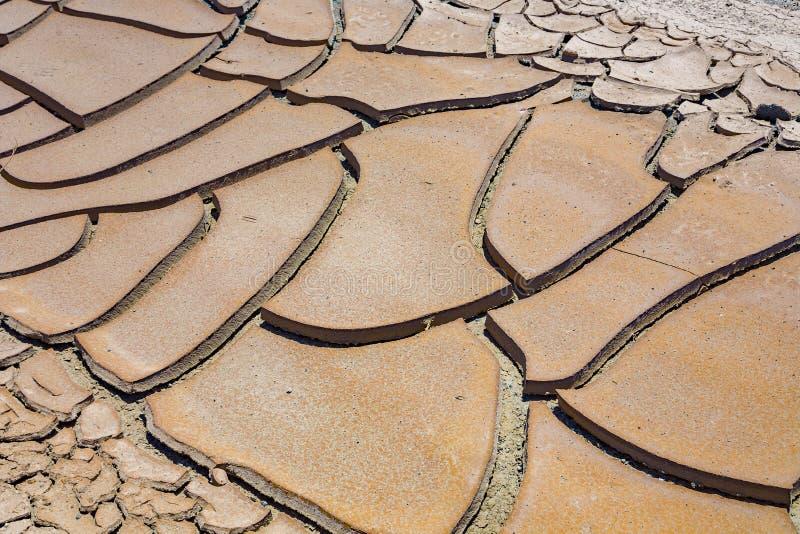 大泥反刍食物镇压和干泥瓦片在死亡谷 免版税库存照片