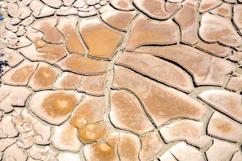 大泥反刍食物镇压和干泥瓦片在死亡谷 库存图片