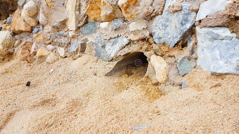大流失被埋没在装饰的石墙下 库存图片
