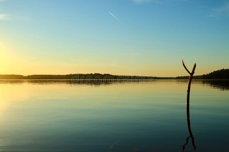 大海在有反射的一个森林湖 库存照片
