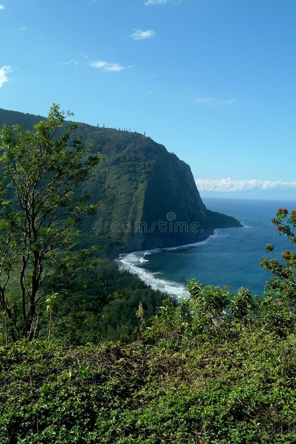 大海岛waimea 免版税图库摄影