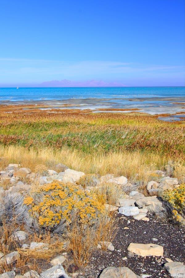 大湖公园盐状态 库存照片