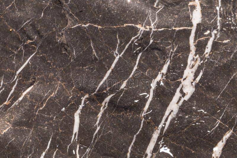 大灰色石头1 免版税库存图片
