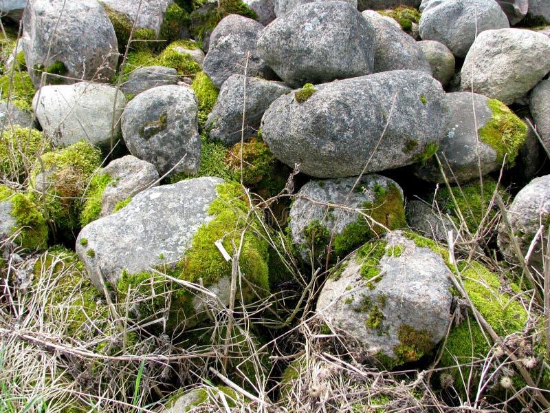 大灰色老石头巨大的堆,盖用绿色青苔 图库摄影