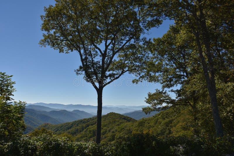 大烟山国家公园在田纳西 免版税库存图片