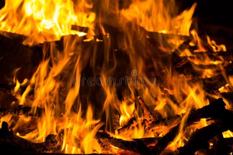 大热的营火 库存照片