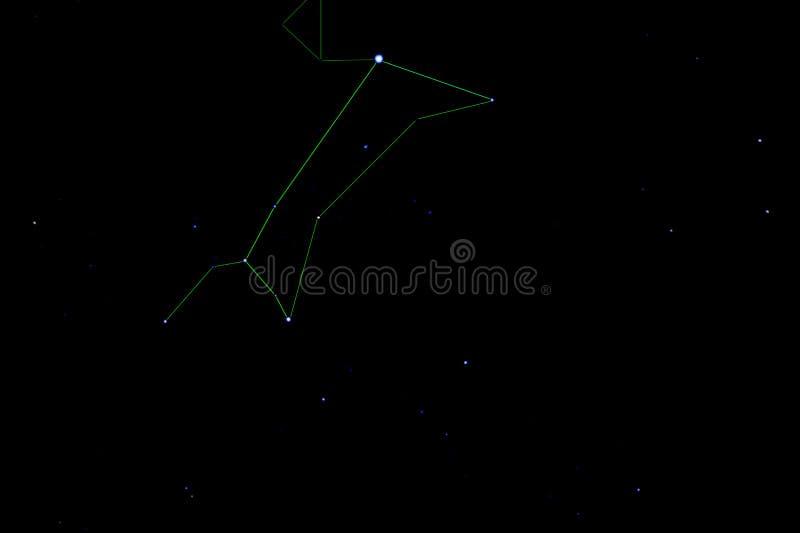 大犬星座星座 星团更加杂乱41 库存照片