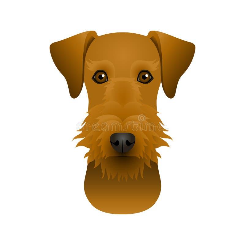 大狗狗的被隔绝的五颜六色的头和面孔在白色背景的 颜色平的动画片品种狗画象 皇族释放例证