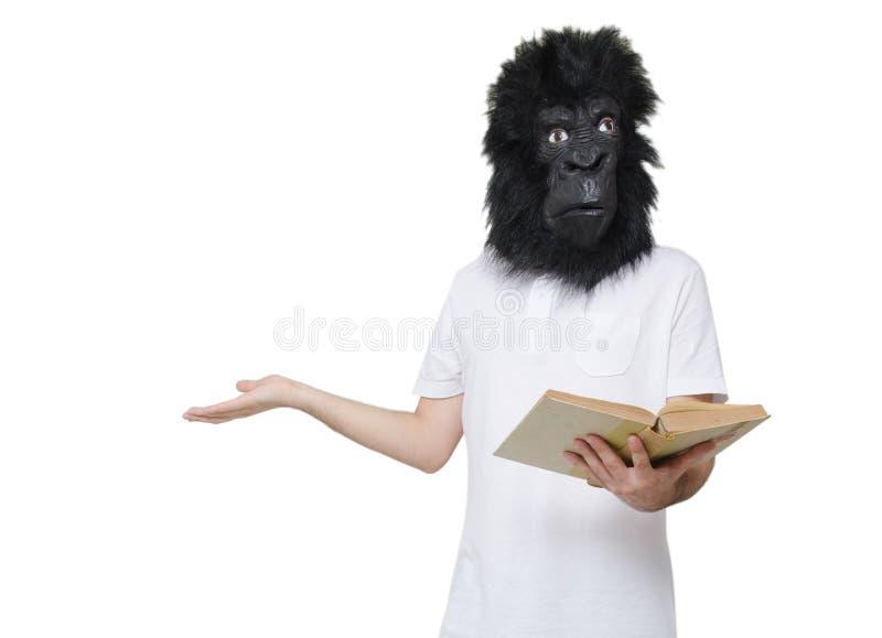 大猩猩人被迷惑 免版税库存图片