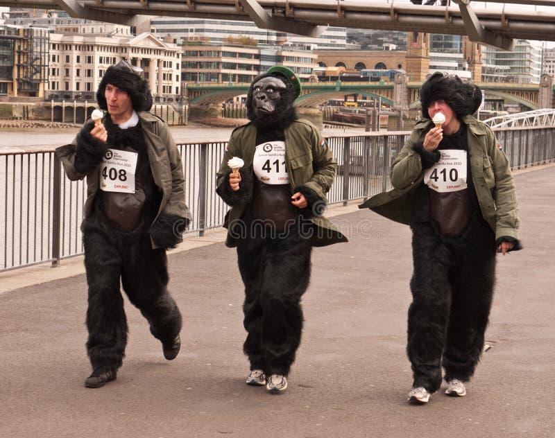 大猩猩巨大运行 免版税库存照片