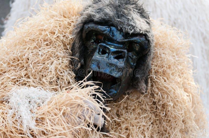 大猩猩面具和服装在圣多明哥狂欢节2015年 库存照片