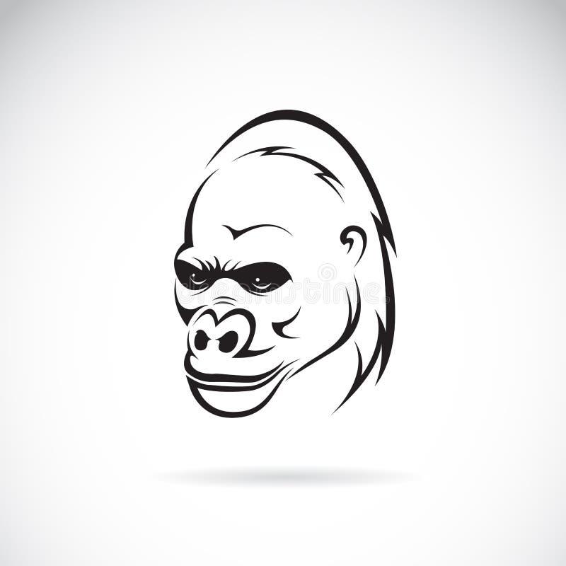 大猩猩头的传染媒介图象 向量例证