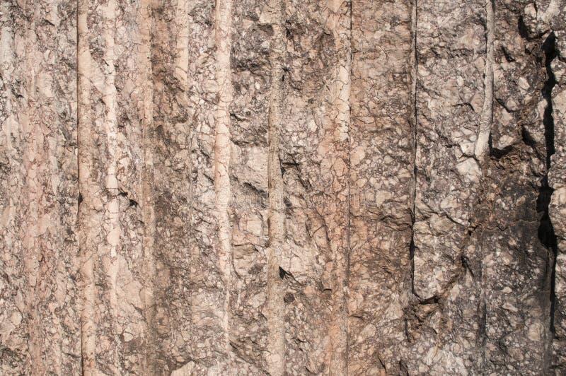 大理石猎物块 库存照片