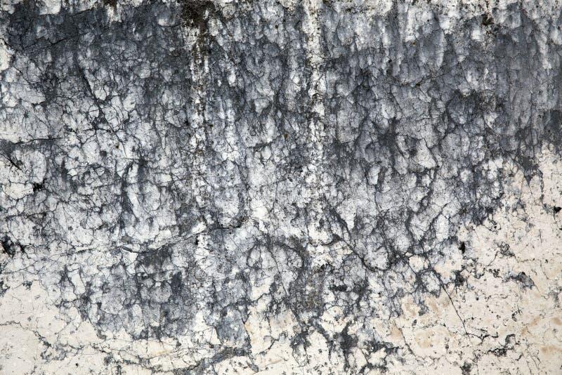 大理石表面 免版税库存图片