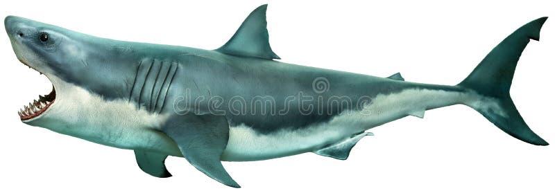 大白鲨鱼侧视图3D例证 皇族释放例证