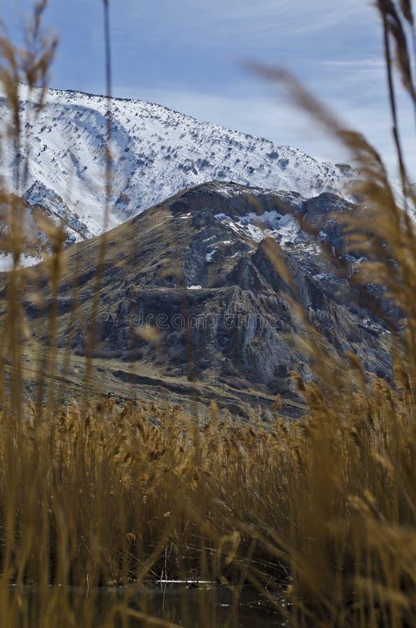 大盐湖山的雪峰顶的长远看法冠上 库存图片