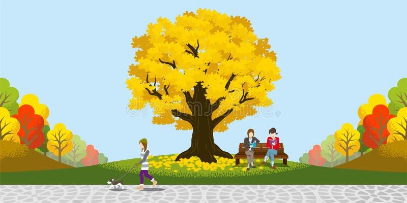 大秋天树在公园 库存例证
