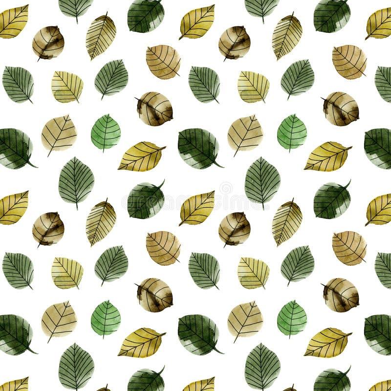 大秋天水彩leaveslarge 向量例证
