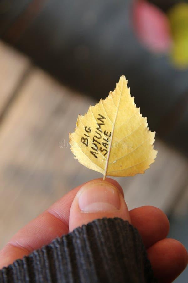 大秋天销售想法,在五颜六色的叶子的文本 软绵绵地集中 免版税图库摄影