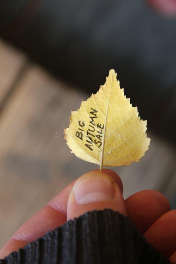 大秋天销售想法,在五颜六色的叶子的文本 库存图片