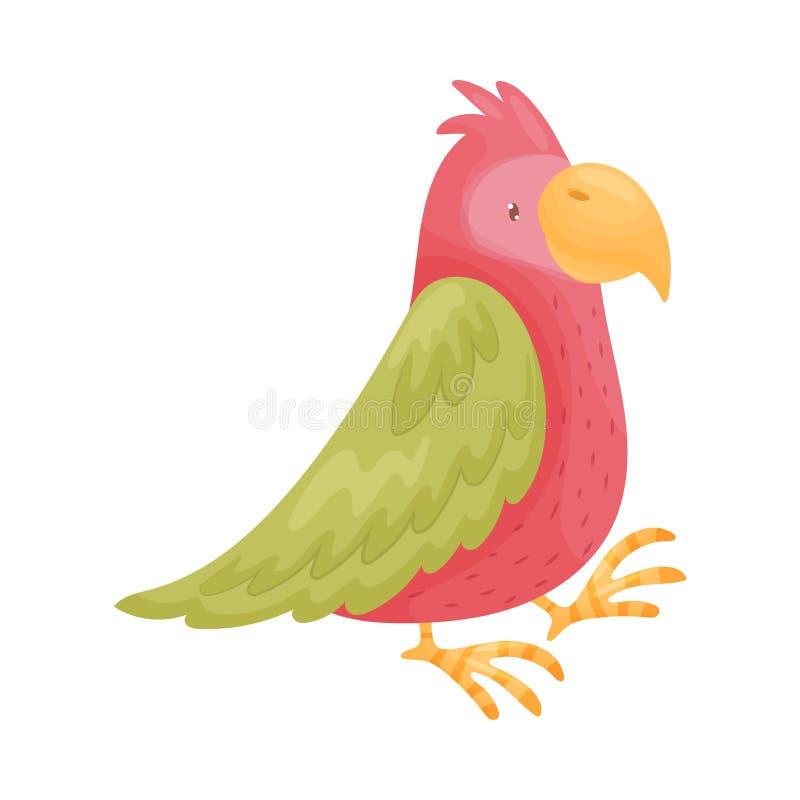 大红色鹦鹉 r 向量例证