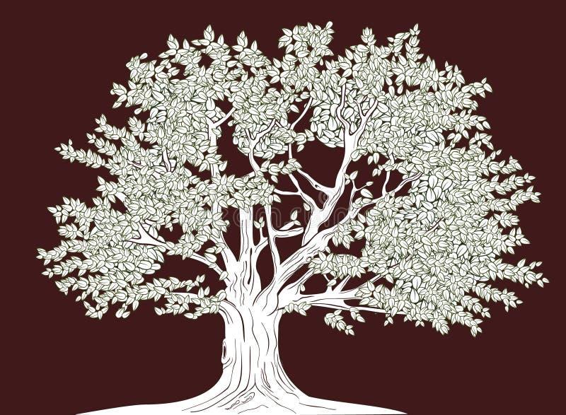 大结构树 向量例证