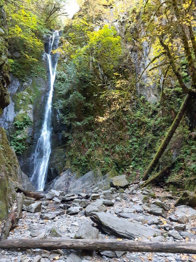 大自然中狭窄的瀑布 库存照片