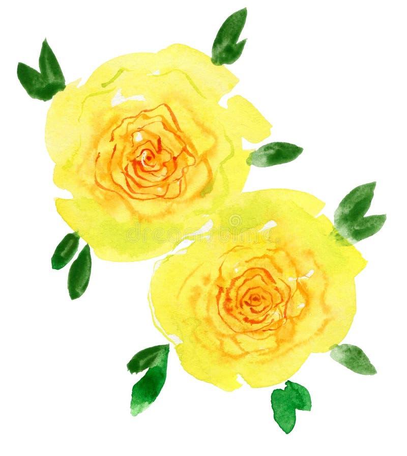 大花黄色 多孔黏土更正高绘画photoshop非常质量扫描水彩 美丽的水彩花 库存照片