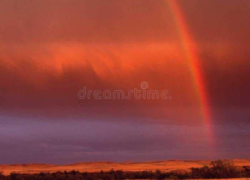 大草原彩虹在南达科他 库存图片