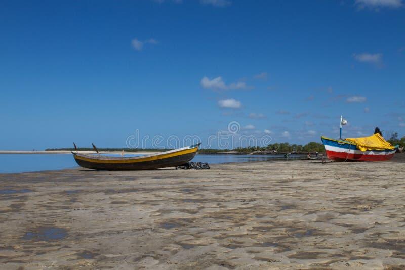 大草原SCAPE在贝拉,莫桑比克,非洲 免版税库存图片