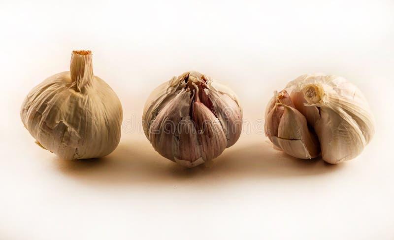 大蒜三个头在白色背景的 免版税库存图片