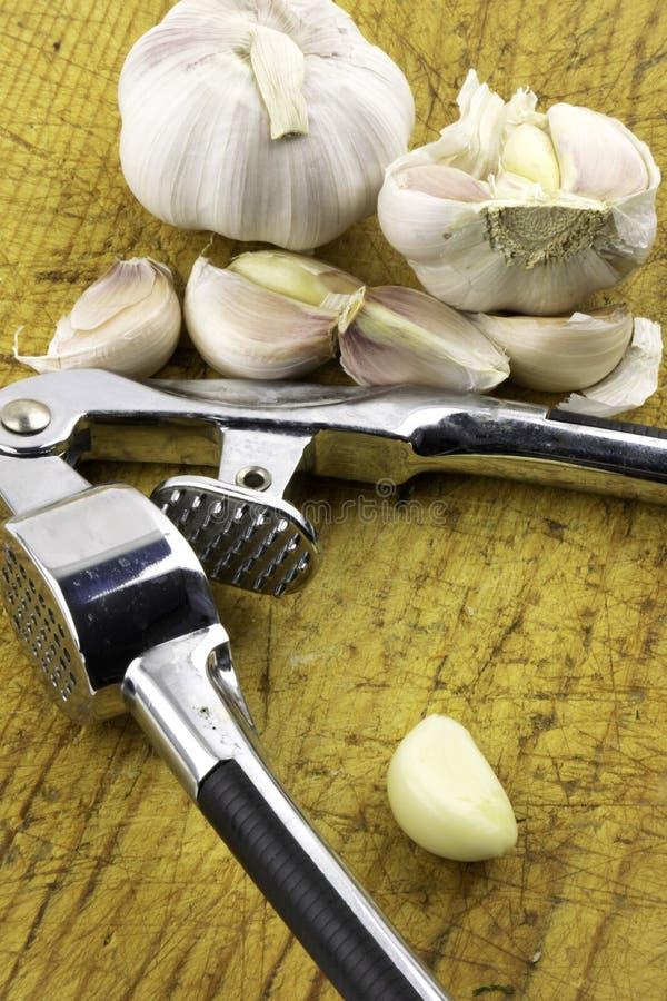 大蒜和大蒜压榨机在一个切板 免版税库存图片