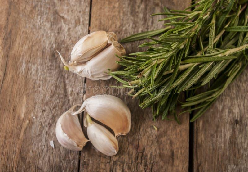 大蒜和迷迭香的构成 库存图片