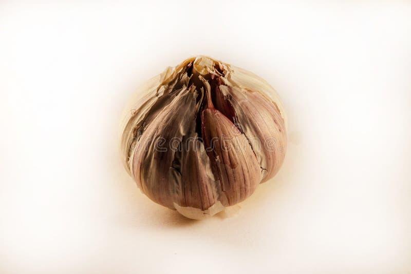 大蒜头在白色背景的 库存照片