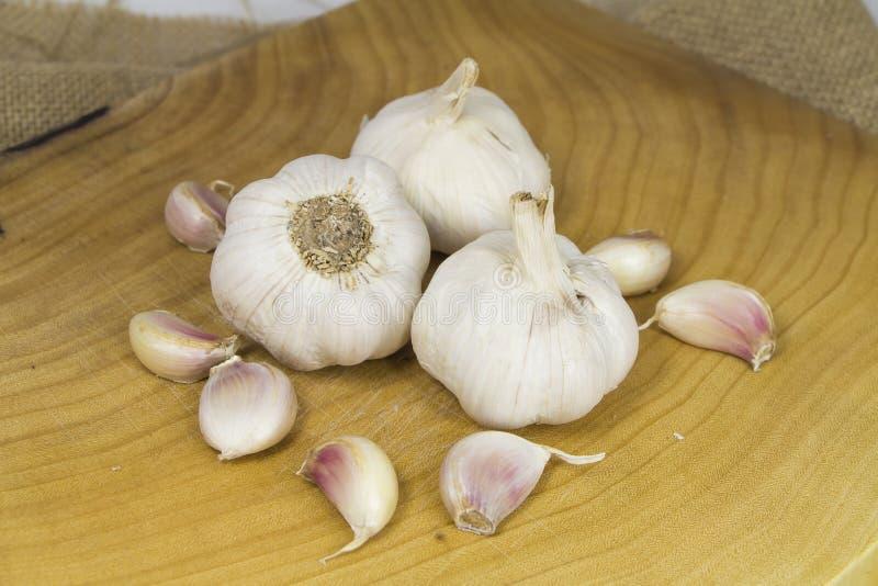大蒜形式Oganic农场 免版税库存照片