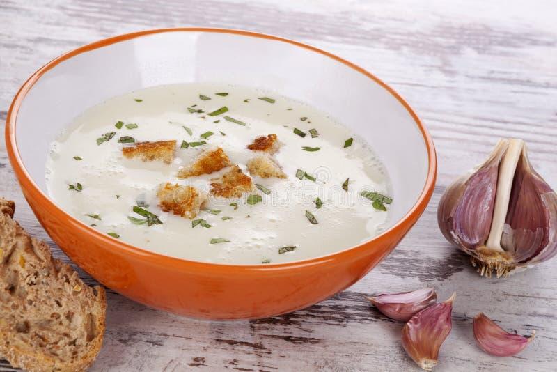 大蒜汤。 免版税库存图片