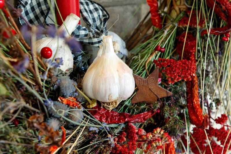 大蒜电灯泡圣诞节花圈 库存照片