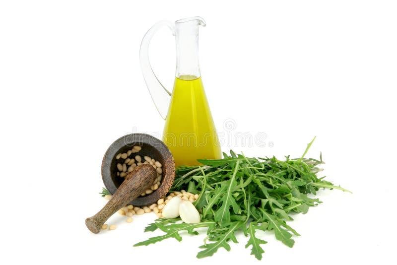 大蒜草本坚果油橄榄 免版税库存图片
