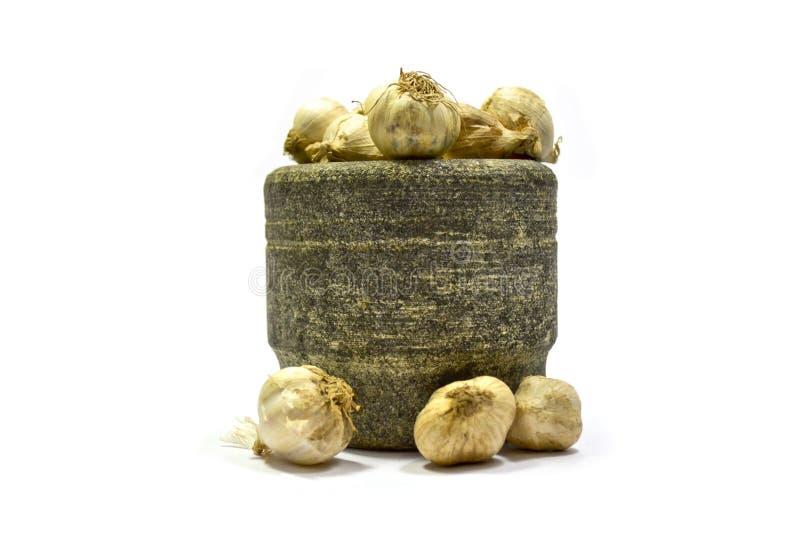 大蒜蔬菜 免版税库存图片