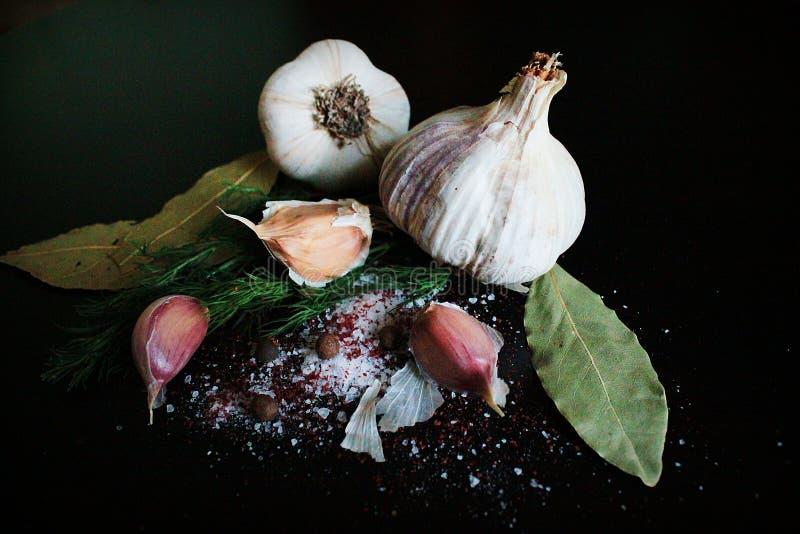 大蒜食物自然盐胡椒莳萝 库存照片