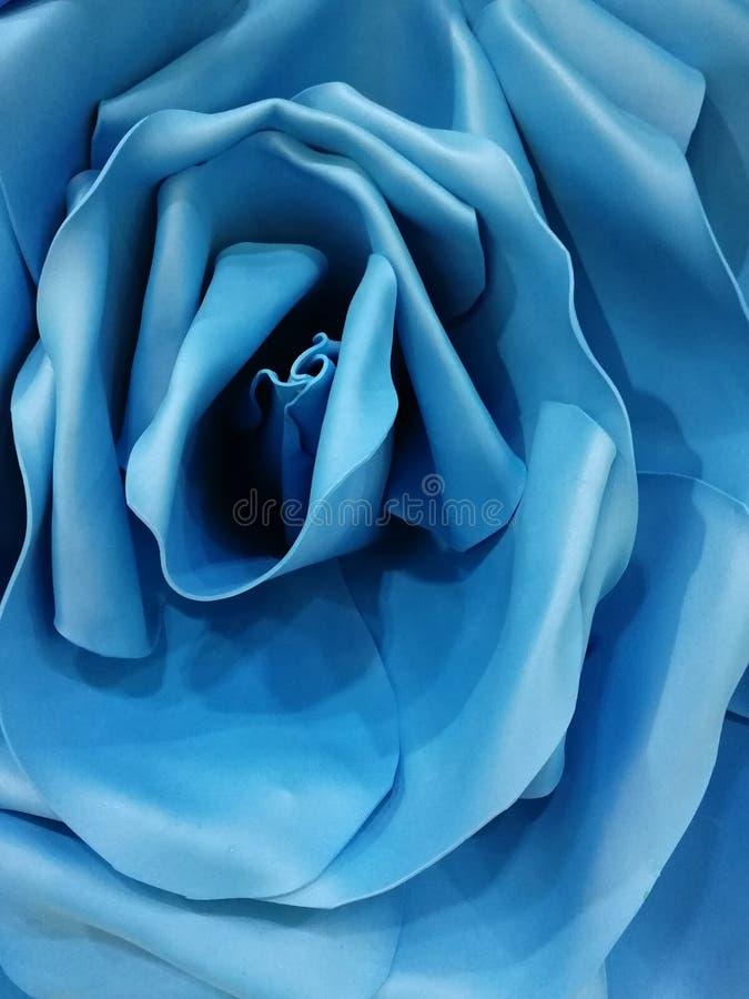 大蓝色花玫瑰色背景 库存照片