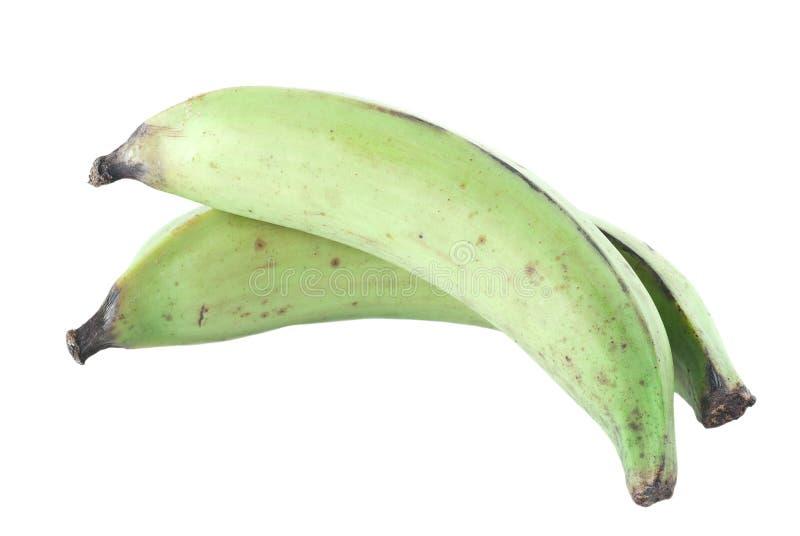 大蕉 免版税库存照片
