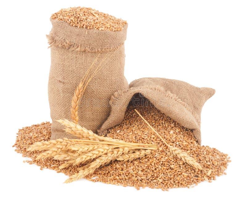 大袋麦子五谷 免版税库存图片