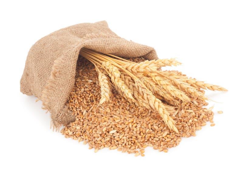 大袋麦子五谷 图库摄影