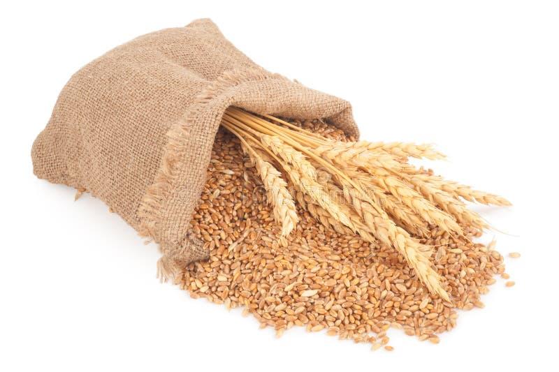大袋麦子五谷 免版税库存照片