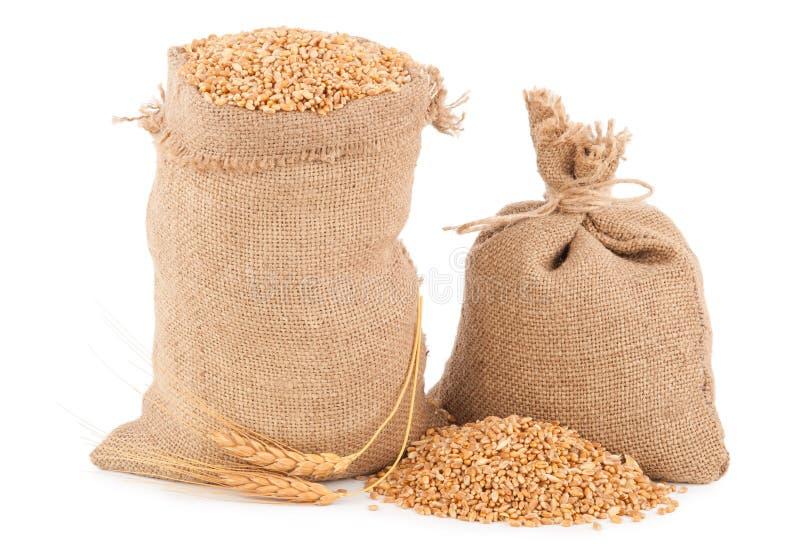 大袋麦子五谷 库存照片