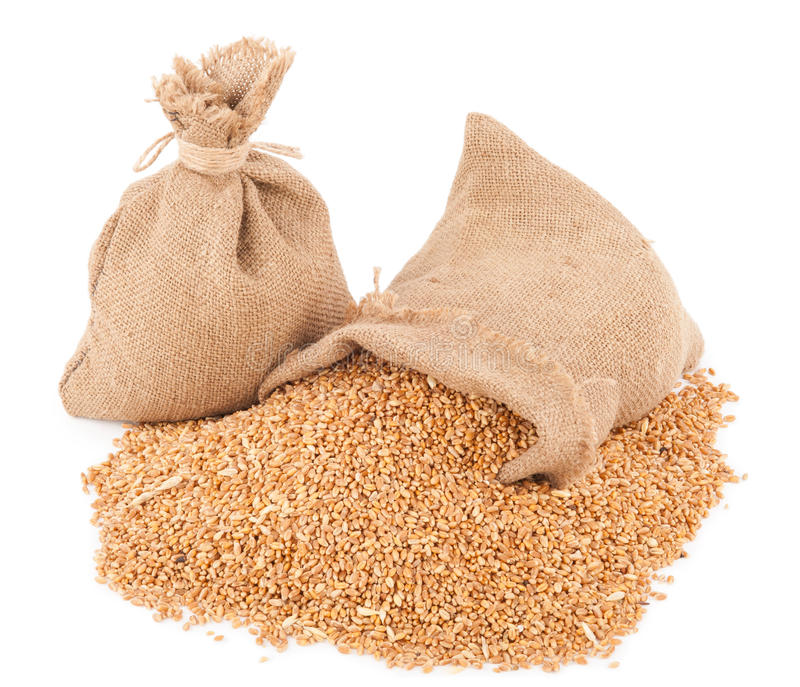 大袋麦子五谷 库存图片
