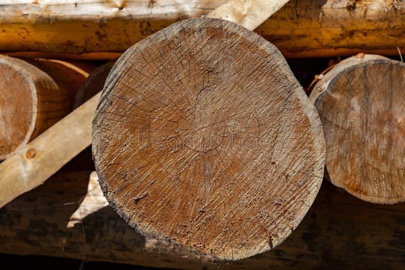 大被锯的圆的松树在生产建筑材料和建筑的准备的堆被放置  免版税库存照片