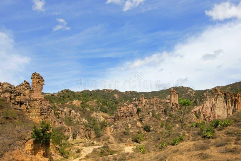 大褐砂石垫座和专栏在Los Estoraques独特的自然地区, Playa De Belen,哥伦比亚 库存图片