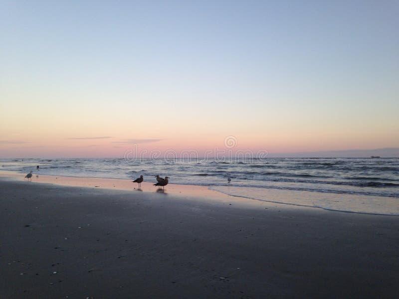 大西洋城海滩 免版税库存图片